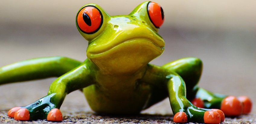 Selbstmotivation: Das Swallow-the-Frog-Prinzip